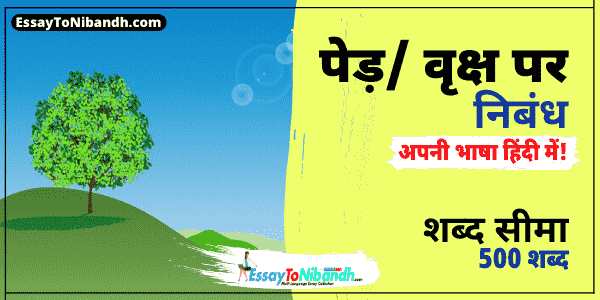 Essay On Tree In Hindi 500 Words