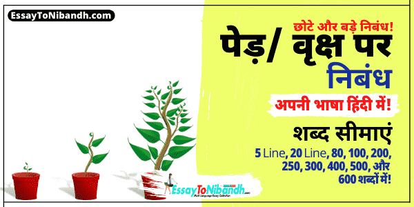 Essay On Tree In Hindi