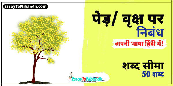 Essay On Trees In Hindi For Class 4 (50 Words)