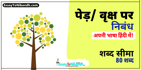 Essay On Trees In Hindi For Class 6 (80 Words)