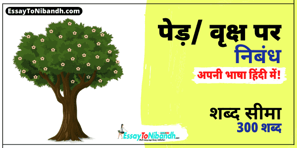Tree Essay in Hindi 300 Words